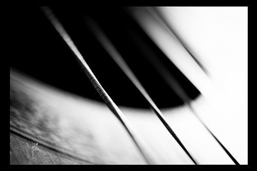 stretched strings - b/w